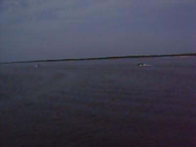 Волгарь на воде