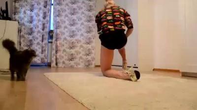 Когда коты мешают делать упражнения