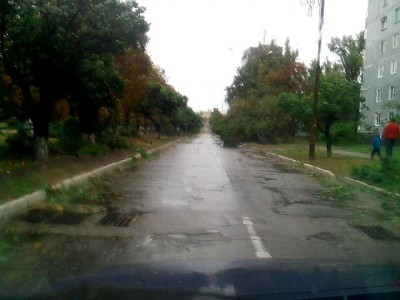 Ветер повалил деревья