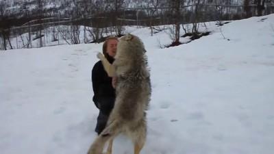 Женщина  с волками