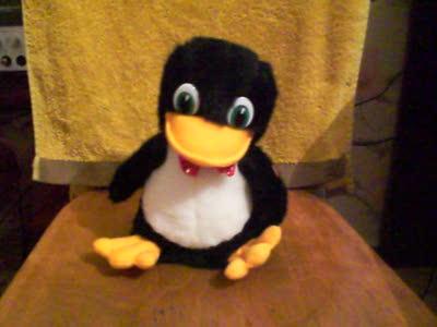 Почему пингвин крякает?
