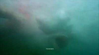 AXE Apollo - Lifeguard TV Commercial