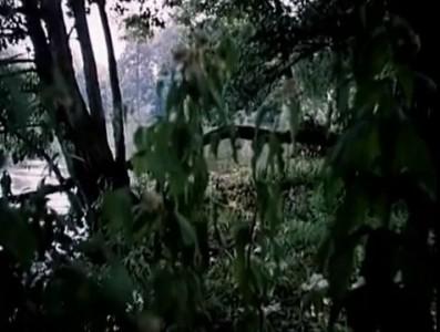 Песенка Медуницы - Незнайка с нашего двора