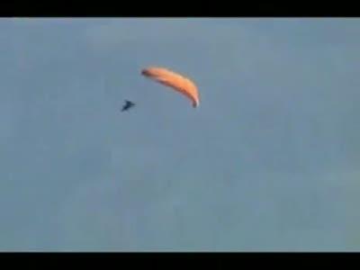 Профессиональный парашютист