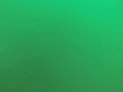 Съемка водолазов с затонувшего парома в Тае