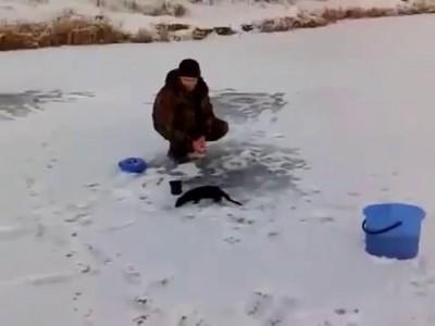 Рыбак остался без рыбы