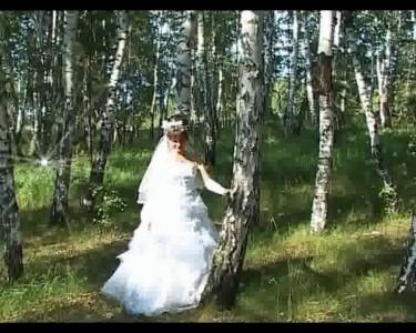 я знаю, кто будет оператором на моей свадьбе