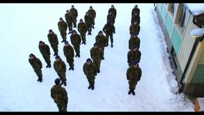Норвежская армия