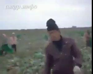 Битва за Амур-китайцы наказали русских