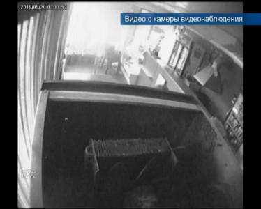 Конь-дебошир нападает на окна домов граждан