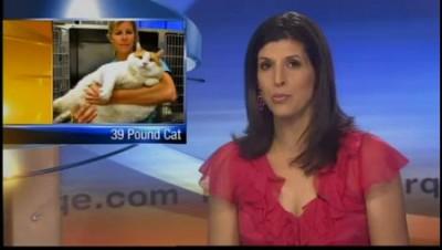 Кот Мяу  весит 18 кг