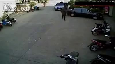 Robbery Failed Big Time.
