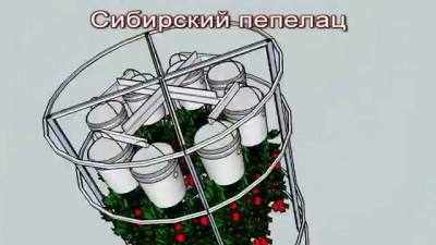 Сибирский Пепелац - теплица для ленивых огородников будущего!