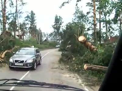 Ураган в Ленинградской области