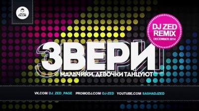 Звери - Девочки, Мальчики Танцуют (DJ Zed Remix)