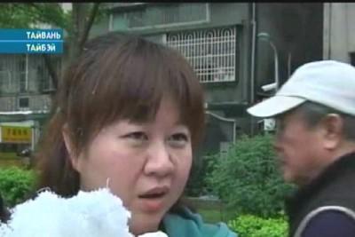 Тайвань отмечает день национального подушечного боя