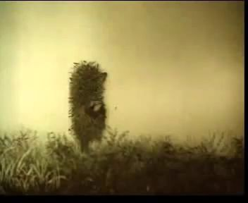 Ёжик в тумане- Псих