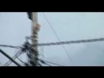 Электрик - камикадзе