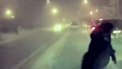Неёжик в тумане !