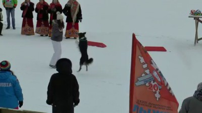 Дыхание зимы 2015 собачий вальс.