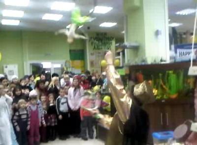 Выступление обезьянки в зоомагазине Динозаврик
