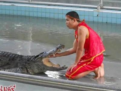 Игры с крокодилами