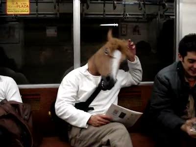 Tokyo Subway Horse