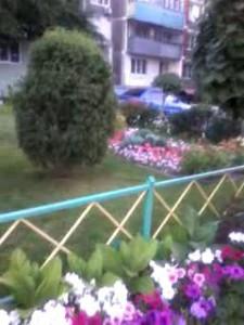 Двор, Курск