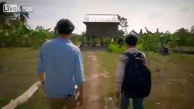 Камбоджийское лакомство - ТАРАНТУЛЫ