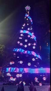 Рождественская елка в Сиднее