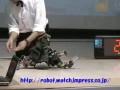 Robo One - Fight 2