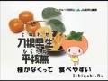 Japan music - песня хит! Вакаяма полная хурмы