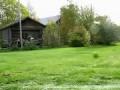 Собака за рулем трактора - Dog driving a tractor