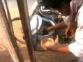 индийский завтрак с велосипеда