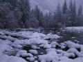 snowy day00010