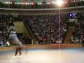 Танцующий ахалтекинец