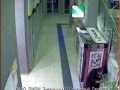 Охранник крадет деньги у животных