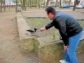 Drunk Crow !!! Пьяная ворона