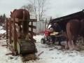Лошадь на тренажере