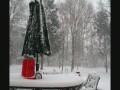 Метр десять снега за 40 секунд!