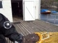 Нападение Морского Черта на дайвера