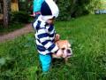 Издевательство над собакой 2