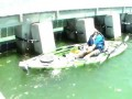 Вот это рыба! Cape Coral Man lands Largest Kayak Bottom Fish Ever!