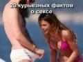 20 курьезных фактов о сексе