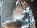 Резка стального ротора  алмазом на СШГЭС