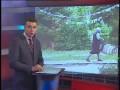 Нападения ворон на детский сад