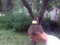 Фокус с яблоком