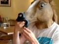 Не в коня корм