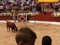 Amazing Bull Jump