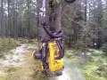 Максимально механизированная лесопилка
